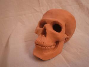 Skull-03