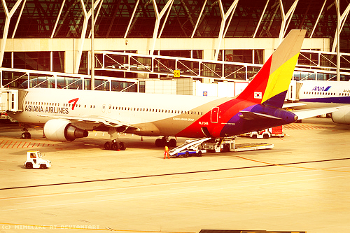 asiana airlines by mimelike