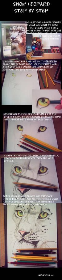 Step by step Spotted Cat