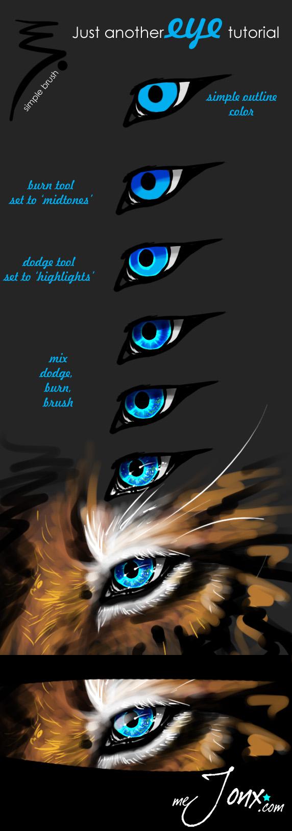 http://fc06.deviantart.net/fs71/f/2012/238/a/3/eye_tutorial_by_mejony-d5chcww.jpg