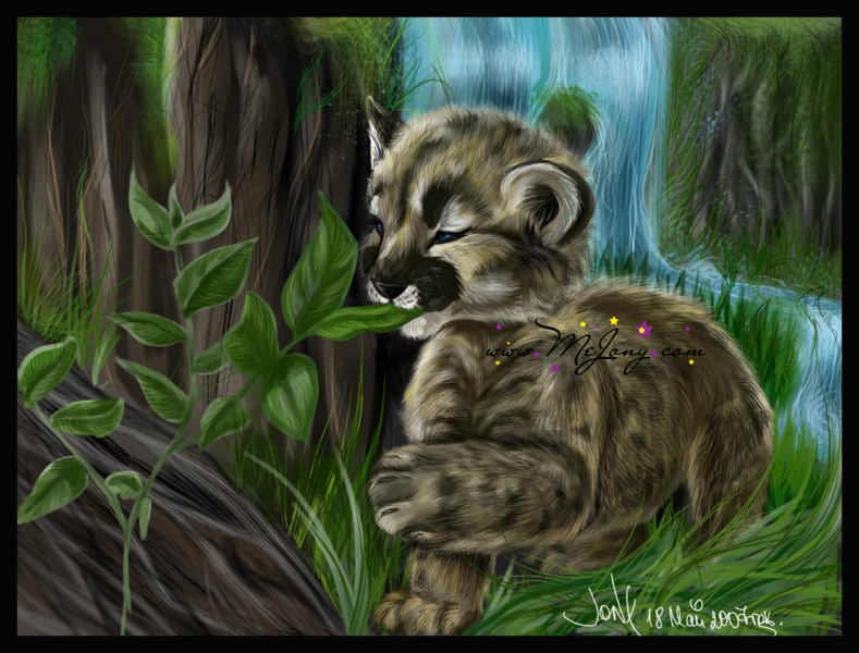 :Baby Cougar: by MEJ0NY on DeviantArt