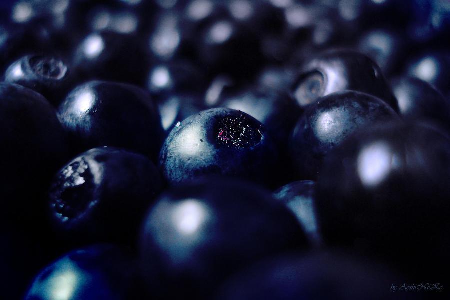 Blueberries by AoshiNiKo