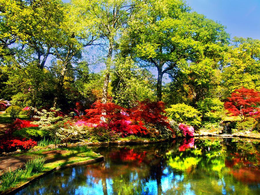 Exbury Gardens by K--a--t--i--e