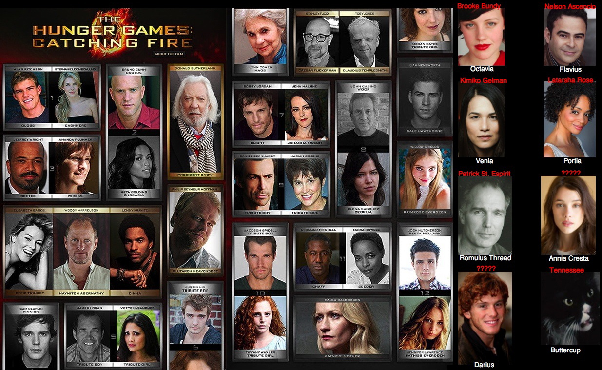 Catching Fire Tributes Cast Official Catching Fire Cast