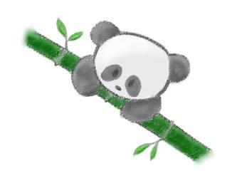 Panda by IrisTearDrop