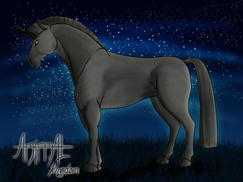 Night Guard by animalkingdomarts