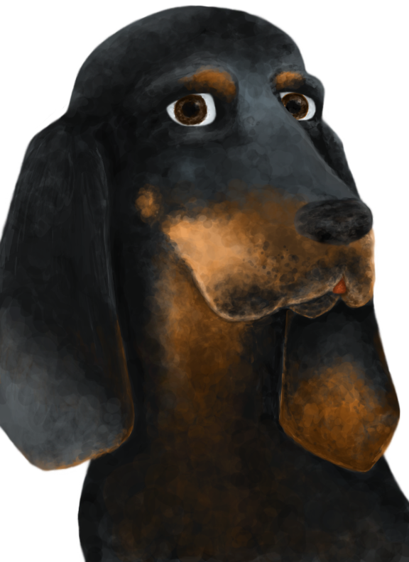 Coonhound by iceiwynd