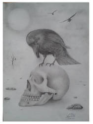 skull by vlesslie