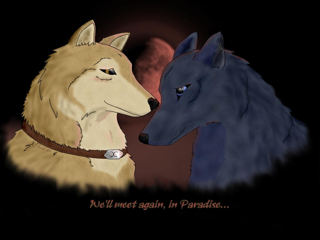 Wolfy Love by AstaraCheetah