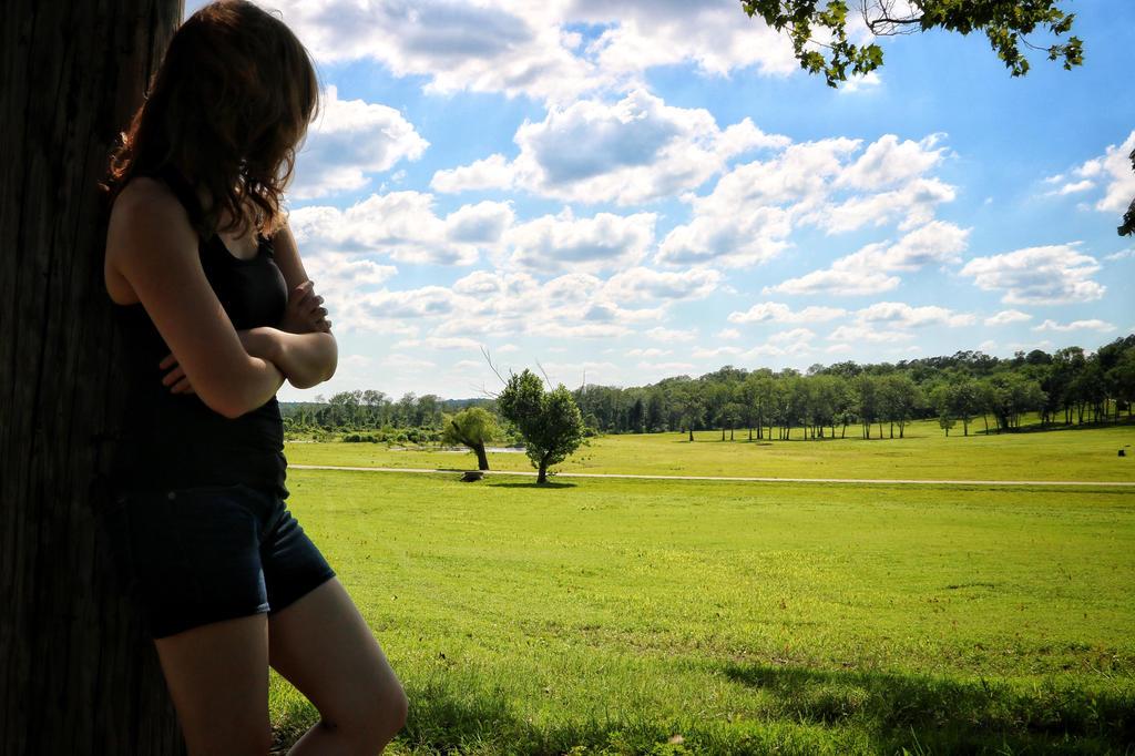 Blue Skies, Green Pastures by blackstar707