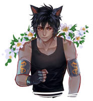 Comm: Fox boy
