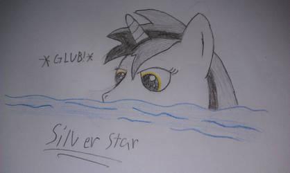 Swimming Silver Star