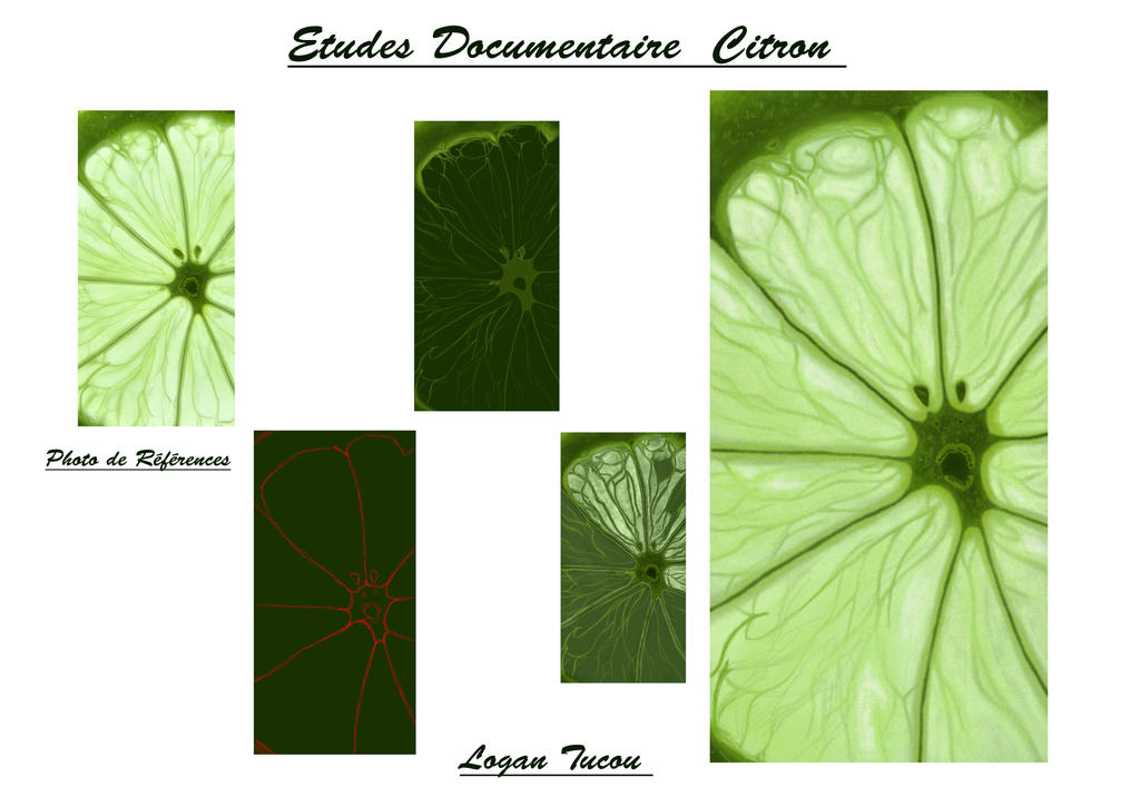 Lemon study by brise miroir on deviantart for Image miroir photoshop