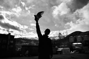 freedom by oscarsnapshotter