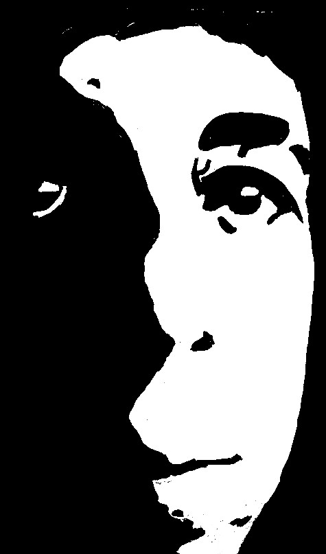 High Contrast Portrait by DreamDragon1 on deviantART