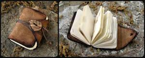 Little Nature Book