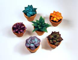 Mini Felt Succulents