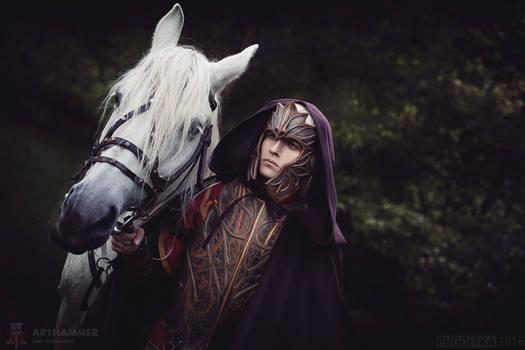 original Mounted Guardian Elf cosplay