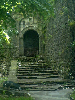 The lucid door