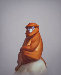 Max, the snub nosed monkey