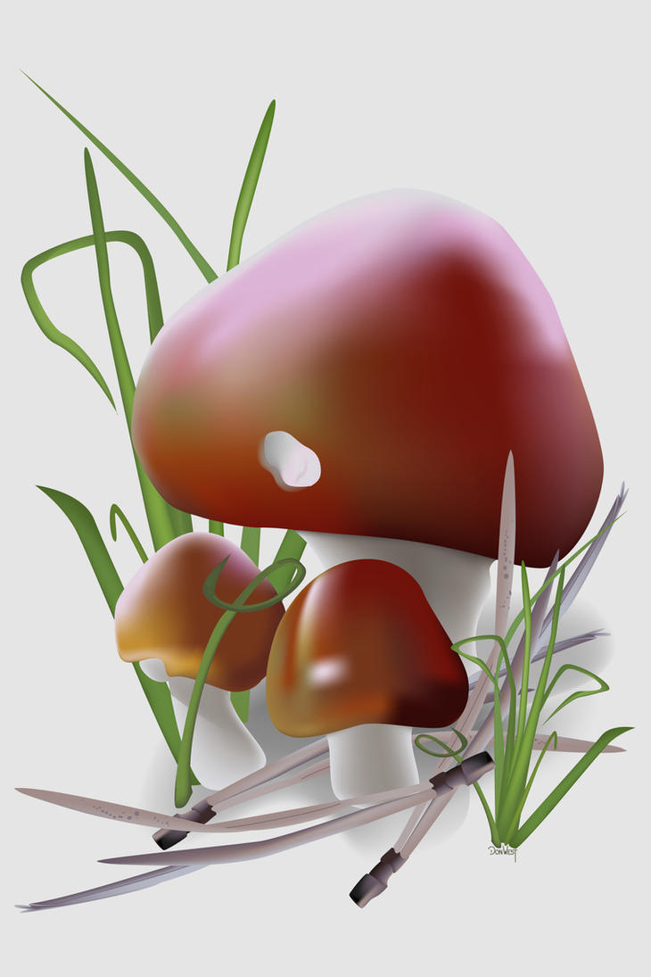 Mushrooms by CapscesDigitalInk