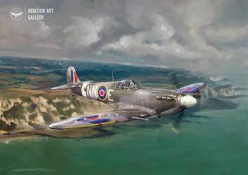 Frantisek Trejtnar's Spitfire