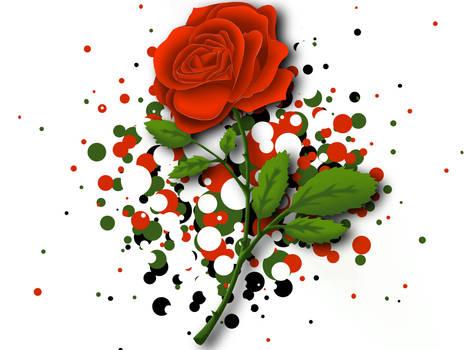 Rose - Happy Valentines Day