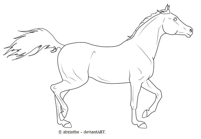 Arabian horse lineart _ 2 by abzinthe on DeviantArt