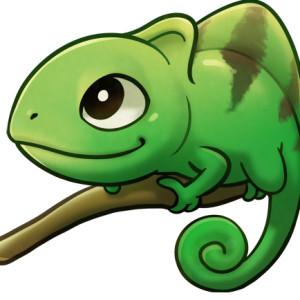 kukon's Profile Picture