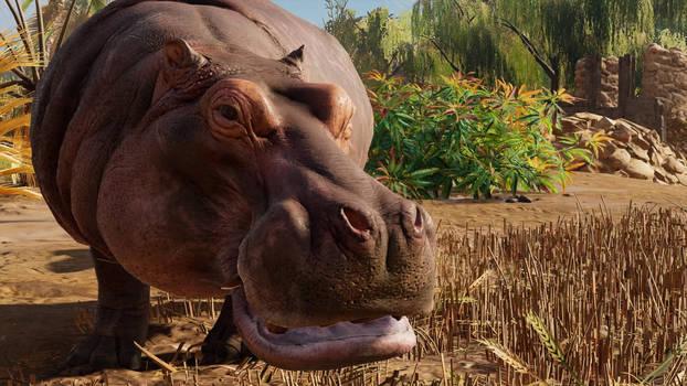 AC:O Hippopotamus in Kanopos Nome