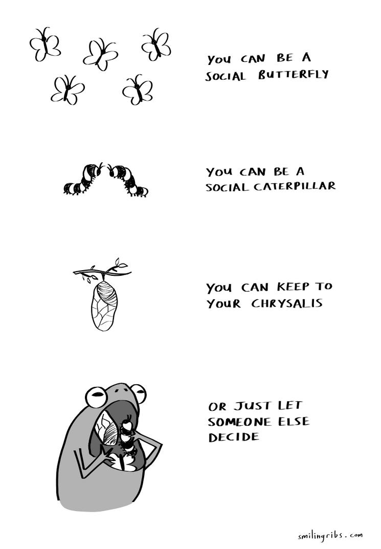 Social Bugs by inkblort