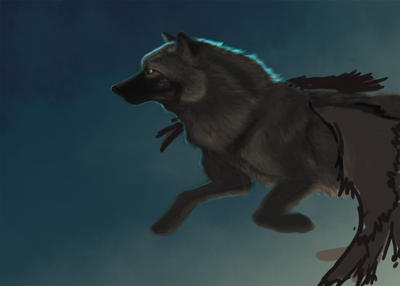 flying wolf WIP3 by Stormslegacy