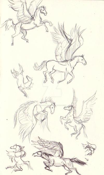 Pegasus sketches by Stormslegacy