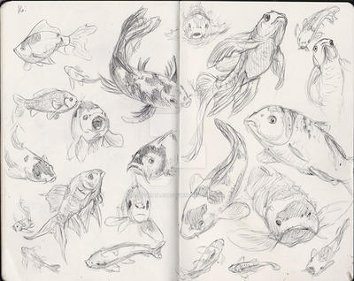Koi Sketches by Stormslegacy