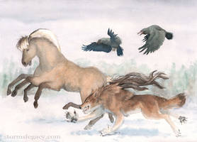 Nordic Werewolf Race