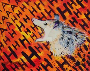 possum scream