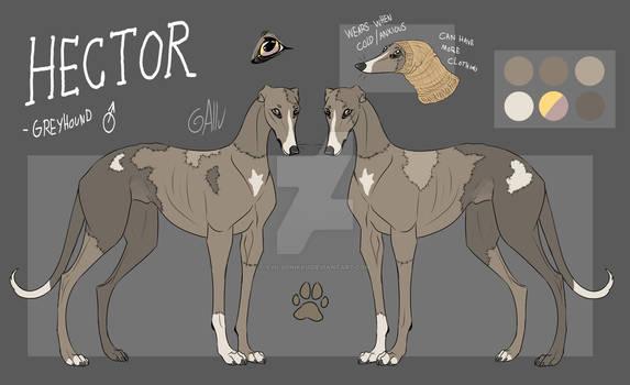 Hector - Reference sheet + description