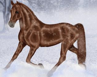 Beautiful winter by Almuli