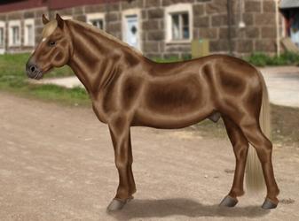 Finnhorse by Almuli
