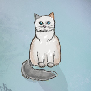 Almuli's Profile Picture