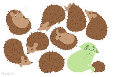 Hedgehog- completed design