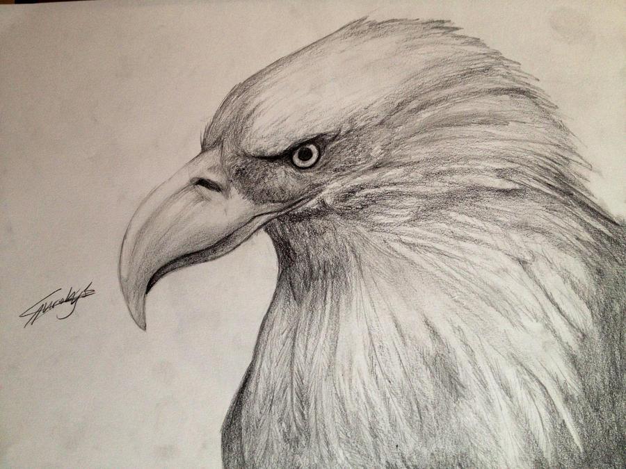 Eagle by Rynaca