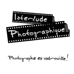 InterludePhoto's Profile Picture