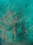 1 Fevrier - Texture (24/26)