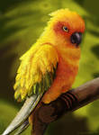 Parrot.