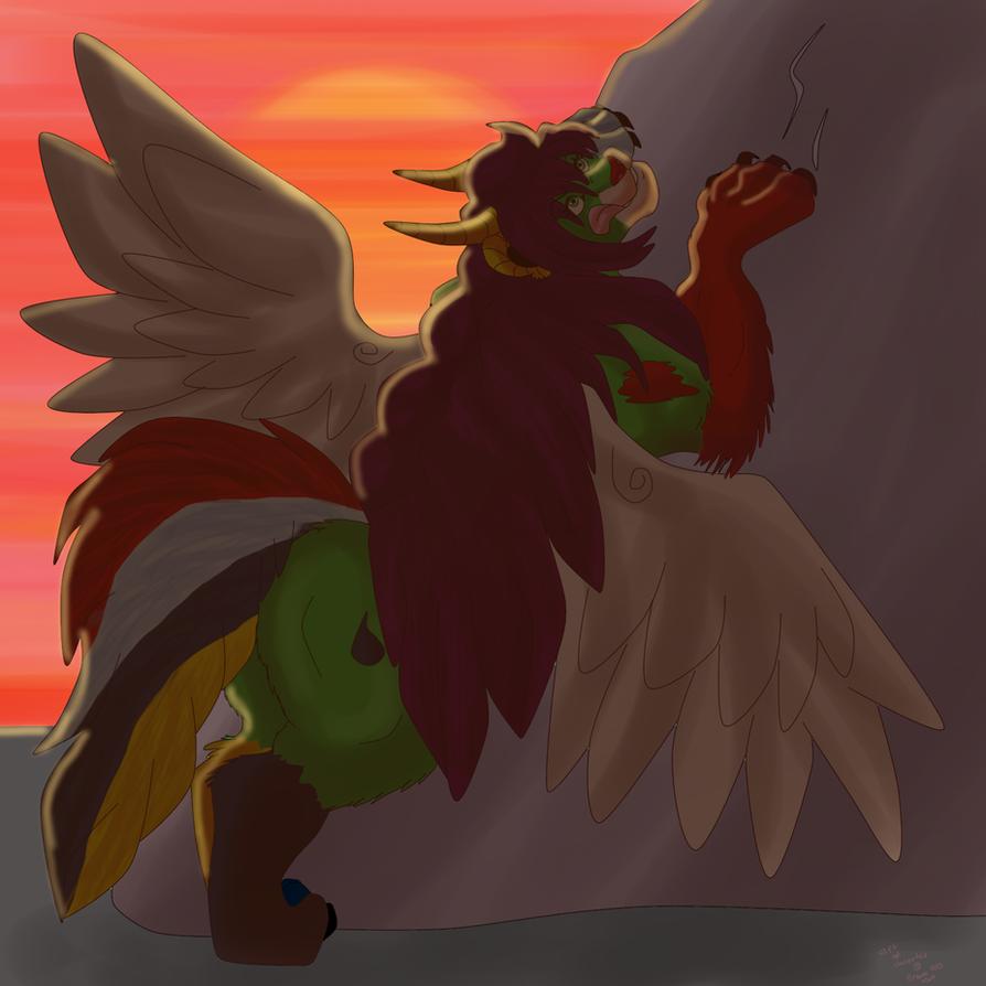 Sunset by dragonrace