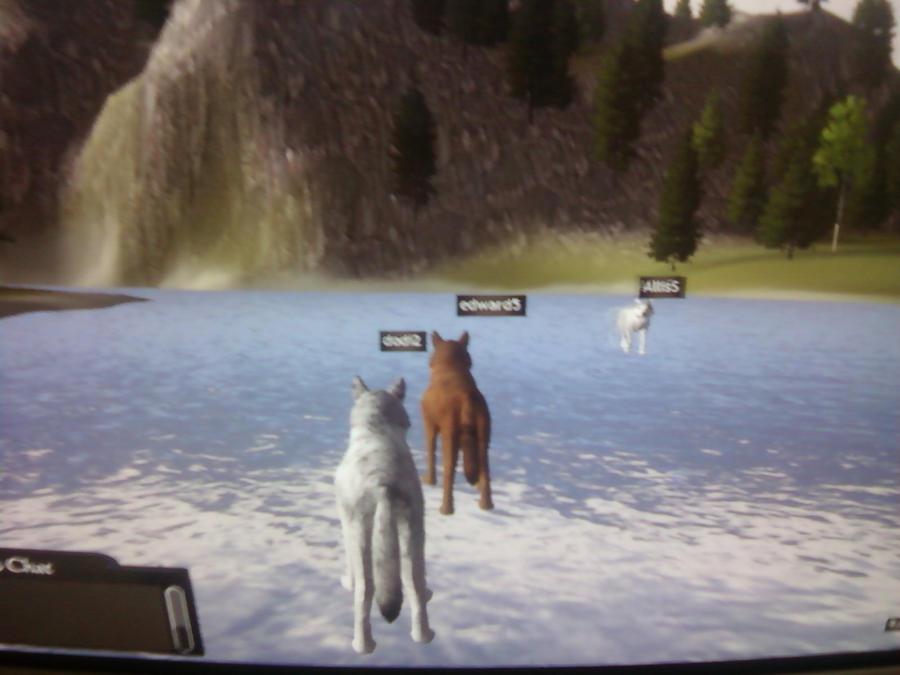 wolfquest multiplayer by emolana on DeviantArt - photo#4
