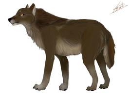 Loup brun by BlastOfWinter