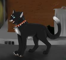 Fan art LGDC/ Warrior cats by BlastOfWinter