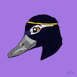 Shaded Duck Headshot by Age-of-Goositude